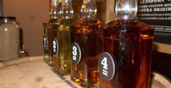 Las mejores marcas de whisky